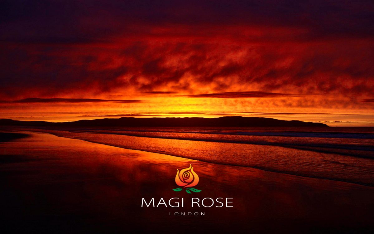 Blazing summer sunset to show the concept of a fiery rose developed into a brand logo